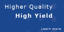 ANGL - Higher Quality High Yield